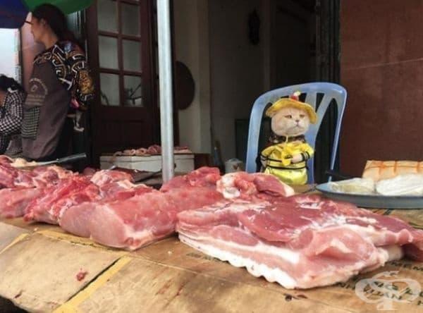 Месо също.