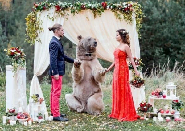 Нищо необичайно - просто мечка венчава двама млади.