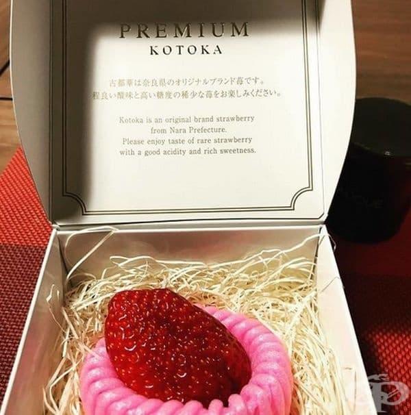 Специално предложение: една ягода Kotoka!