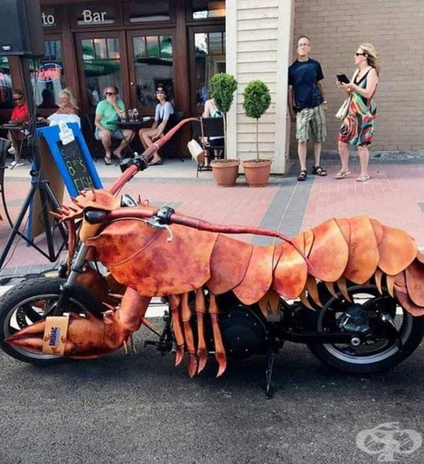 На какъв мотоциклет желаете да се повозите? На този омар?