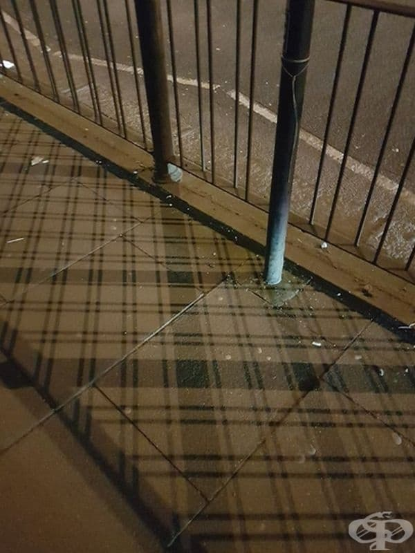 В Шотландия дори сенките са в клетка!