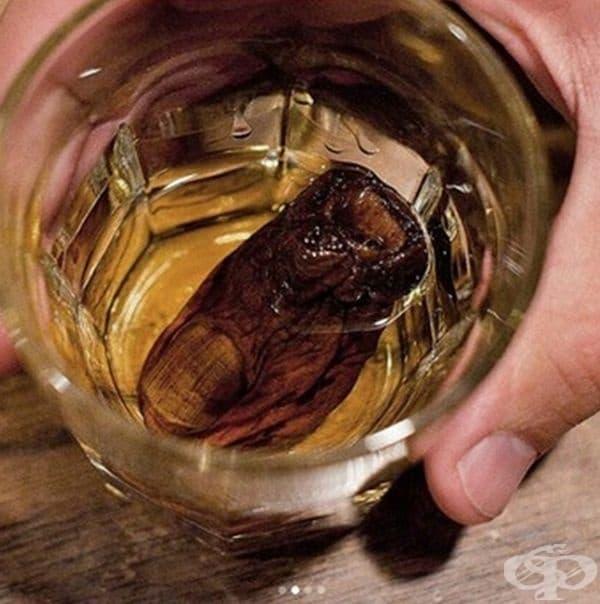 """Коктейл """"Кисел пръст от крак"""". Това е култово алкохолно питие е канадския бар Sourtoe Cocktail Club в гр. Доусън.Историята тръгва от ампутацията на пръсти поради измръзване на миньор преди 50 г., поставени в бутилка с алкохол."""