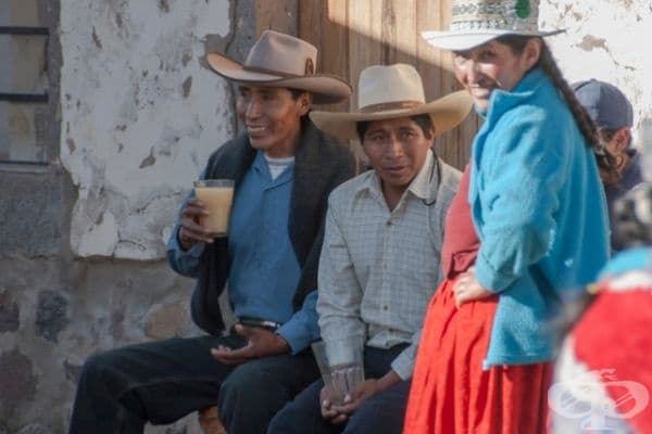 Чича - напитка от древните инки от Южна Америка. Състои се от сдъвкани царевични зърна, напоени и изплюти със слюнка във вода. Има алкохолен вариант – 6% и безалкохолна, която наподобява вкуса на лимонада. Според местните е добра в горещи дни.