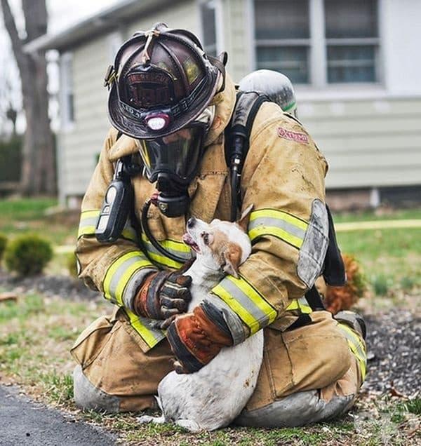 Пожарникар утешава куче, спасено от огъня в къщата.