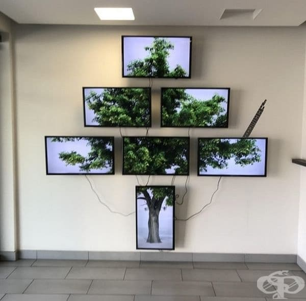 Истинските растения явно не са интересни. Тук предпочитат да излъчват едно дърво на 7 телевизора.