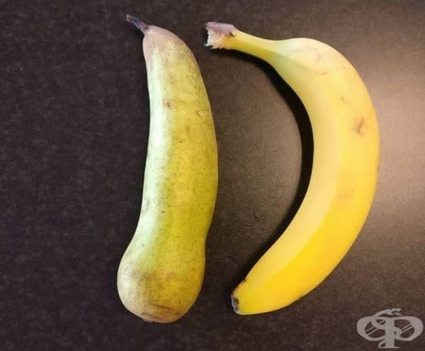 Круша или банан?