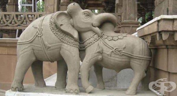 Това глава на слон ли е или бик?