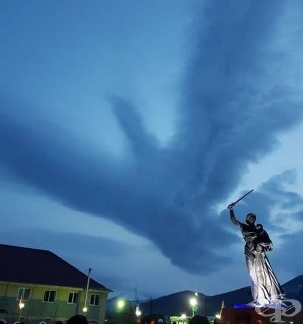 Огромна птица в небето над Сибир.