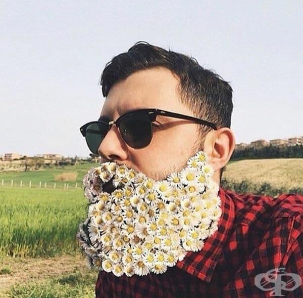 През пролетта разцъфва всичко, дори и брадите.
