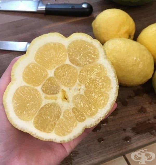 Лимон от пето измерение.