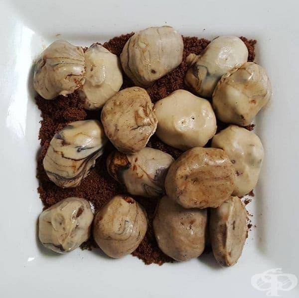 Камъни от шоколад с глазура.