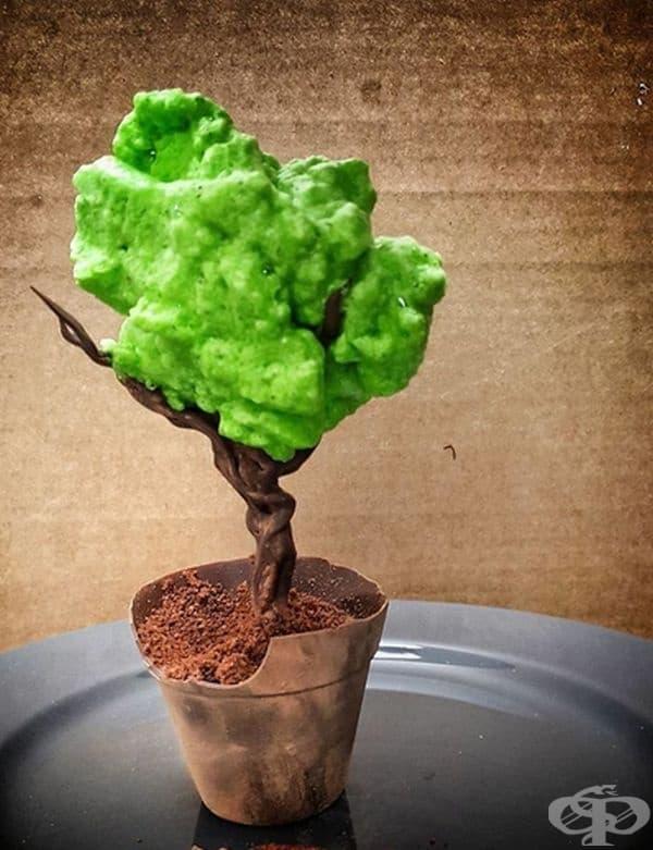Дърво, изработено от шоколад, шоколадов мус и зелена пяна от белтъци.