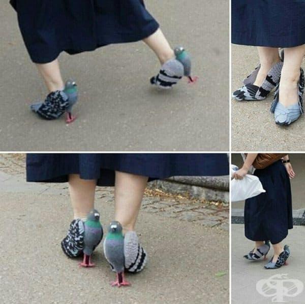 Обувки - гълъби.