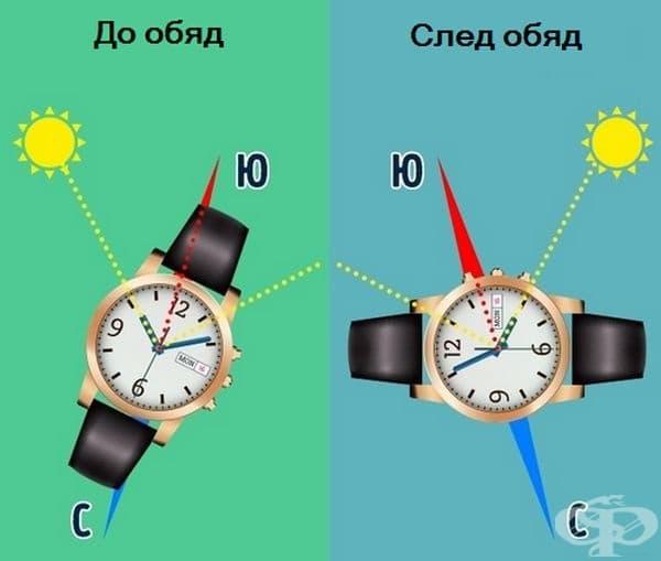 Определете посоката като завъртите часовника така, че малката стрелка да е насочена към слънцето. След това разделете наполовина ъгъла между малката стрелка и 1. Линията по средата посочва юг. До обяд юг е от дясната страна на слънцето, а следобед-отляво.