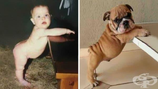 Бебе и куче в една поза.