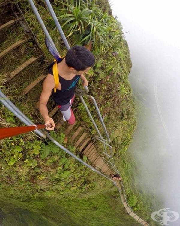 """Стълба Хауки, Хавай, известна като """"Стълбата към небесата""""."""
