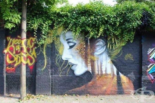 Улично изкуство от красиви стенописи и естествени цветя