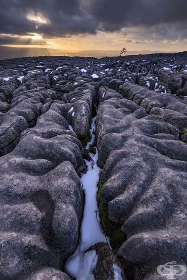 Варовиков ландшафт, Национален парк Йоркшир Дейлс, Великобритания.