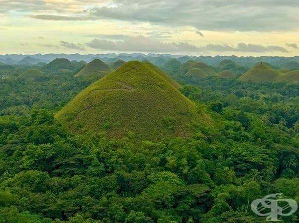 Шоколадовите хълмове, Бохол, Филипини.