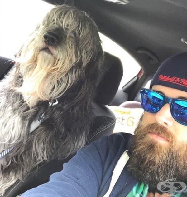 Това е бен. Той има брада и е огромен. Определено прилича на собственика си.