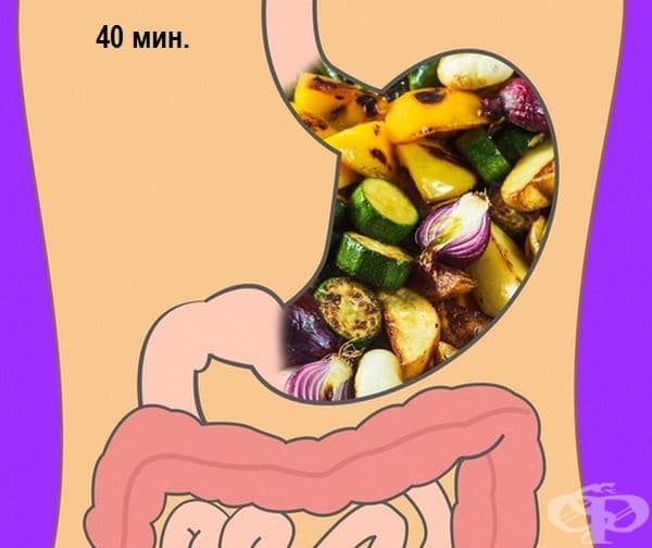Варени зеленчуци - 40 минути