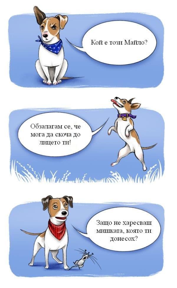 Джак Ръсел териер