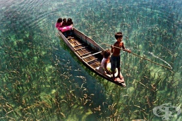 Деца в кристално чисто езеро, Сабах, Малайзия.