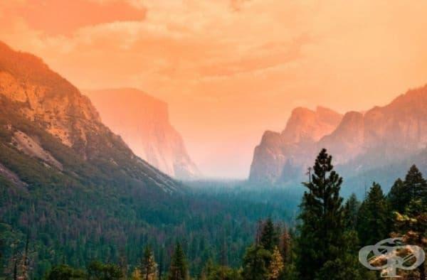 Лято в национален парк Йосемити, Калифорния, САЩ
