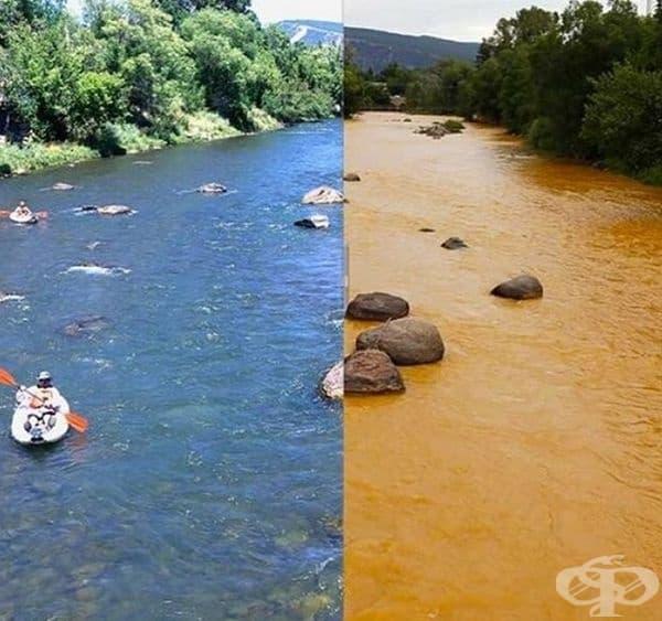 Ето какво прави промишлеността с природата.