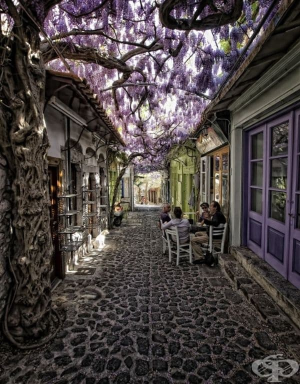 Моливос, Гърция.