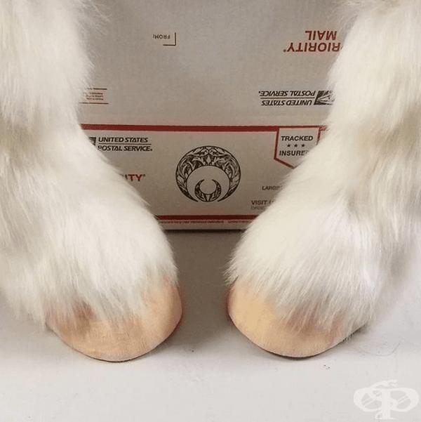 Художник създава обувки и ботуши във формата на копита на животни
