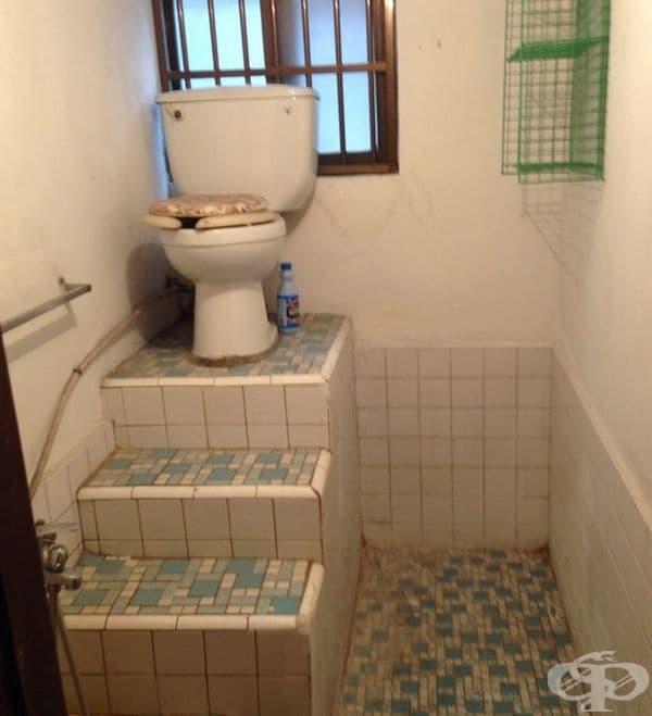 Когато сте цар, си имате трон и в тоалетната.