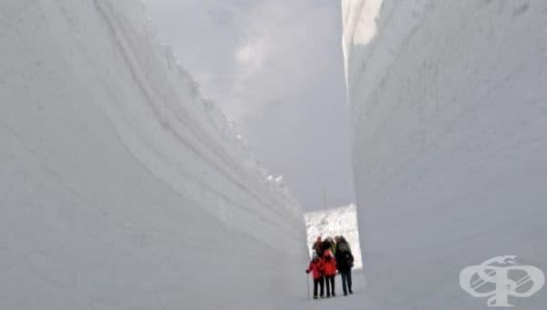 Хората, които не обичат тълпите, могат да посетят забележителността през юни, когато стените са високи около 10 метра.