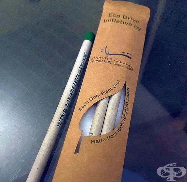 Можете да засадите капачката на този молив, след като сте го използвали и да наблюдавате как се превръща в домат, кориандър или чили.