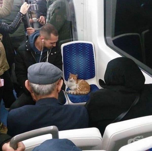 В градския транспорт на Истамбул.
