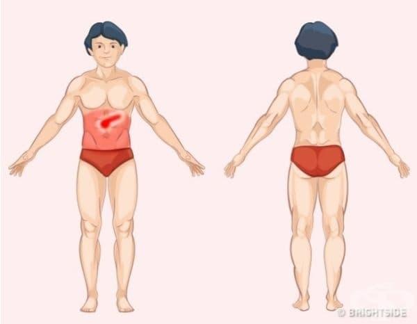 Панкреас. Проблемите с панкреаса се усещат като болка в средната горна част на коремната област и по-слаба болка в целия стомах. Ако панкреасът е причината за дискомфорта, то болката ще се увеличи, когато лежите по гръб и след хранене.
