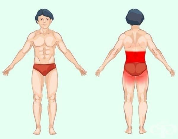 Бъбреци. Тази болка понякога може да бъде объркана с обикновена болка в гърба. Разликата е, че болката, причинена от бъбреците е по-дълбока под ребрата, докато мускулната болка обикновено са по-слаба.
