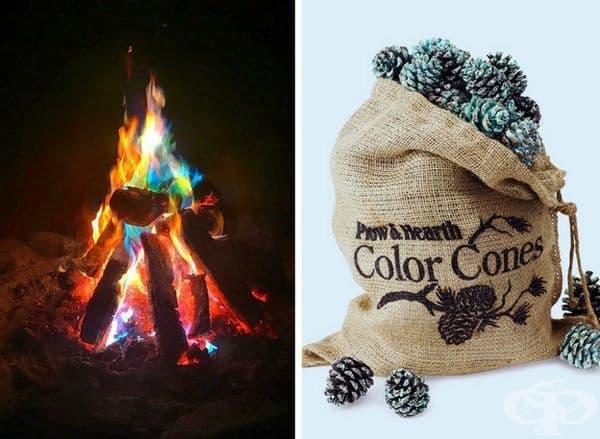 Тези борови шишарки променят цвета на пламъците, когато се хвърлят в огъня.