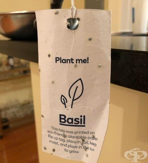 Хартиен етикет от тиган, който може да бъде засаден за отглеждане на билки.
