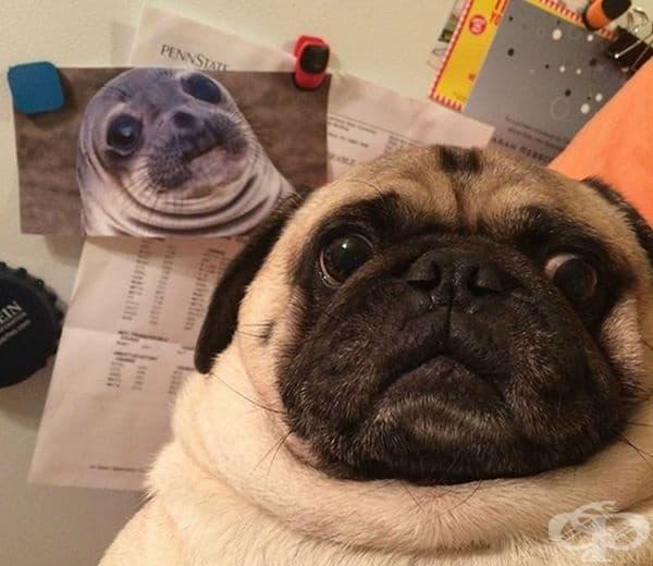 """""""Това е моят син. Вижте колко си приличаме."""""""