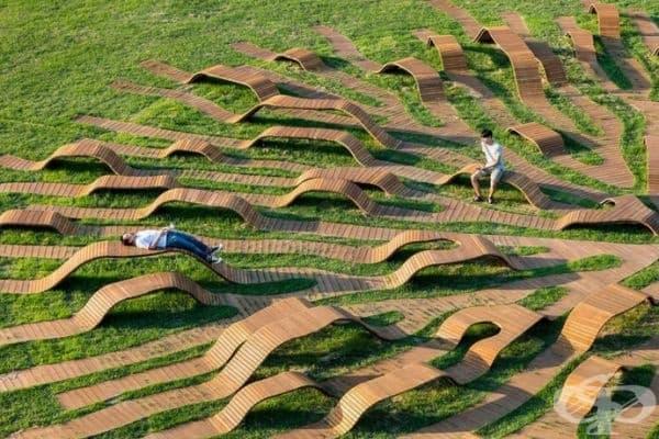 Скамейки с корени, Северна Корея.