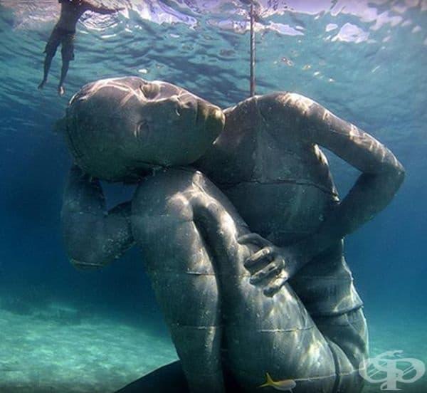 Тя носи тежестта на океана на раменете си