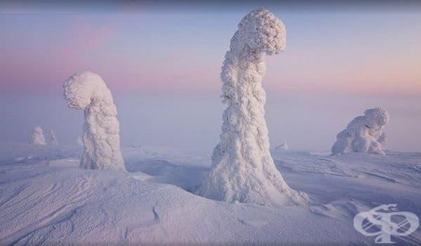 Снимка от Лапландия, където времето включва ниски температури и силен снеговалеж.