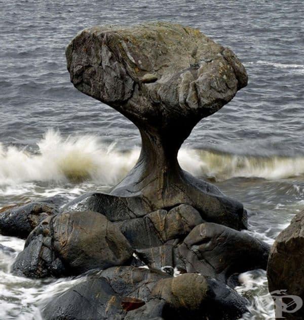 Скална формация, образувала се от вълните, които се разбита в нея.