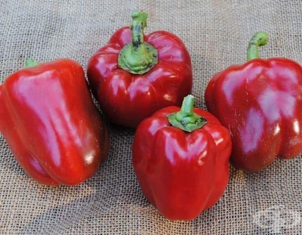 Червените чушки съдържат високо съдържание витамин С и мощни антиоксиданти, наречени каротеноиди. Те имат много противовъзпалителни свойства и могат да предпазят кожата от вредното въздействие на слънцето, замърсяването и токсините в околната среда.