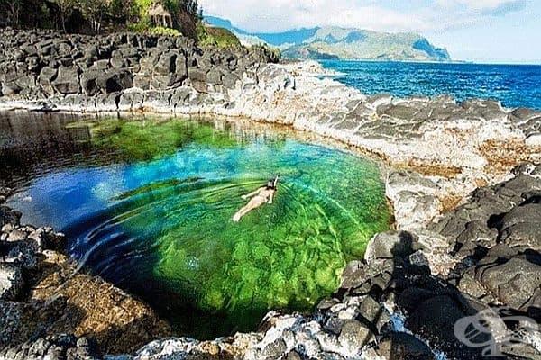 """""""Банята на кралицата"""", Кауаи, Хавай. Това е уникален карстов водоем, заобиколен от вулканични скали. На дъното живеят риби и други морски създания."""