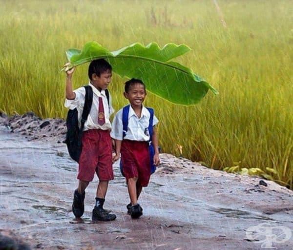 Животът винаги е слънчев с приятел до вас.