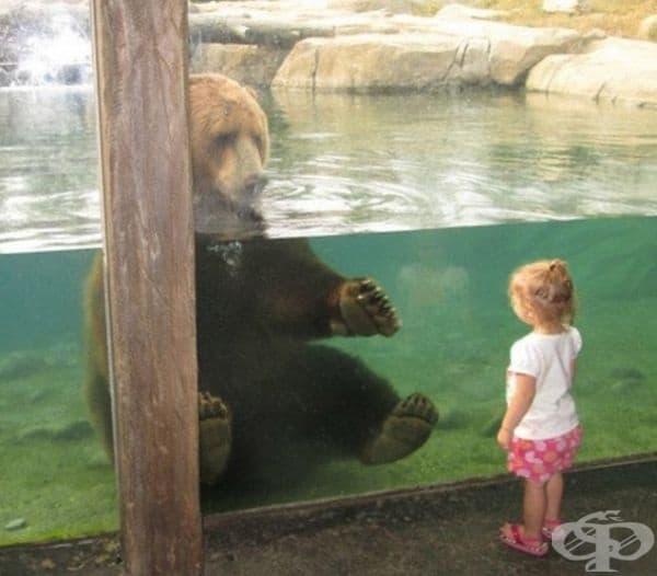 Голям плюшен мечо.