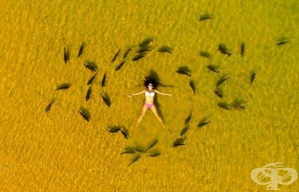 Тази снимка е направена на наистина райско място - плаж в Бразилия. Южното слънце, златистите пясъци и живописна лагуна – какво друго му трябва на човек?