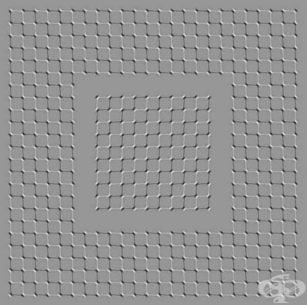 Разгледайте картинката отдолу нагоре и квадратите ще се размърдат.